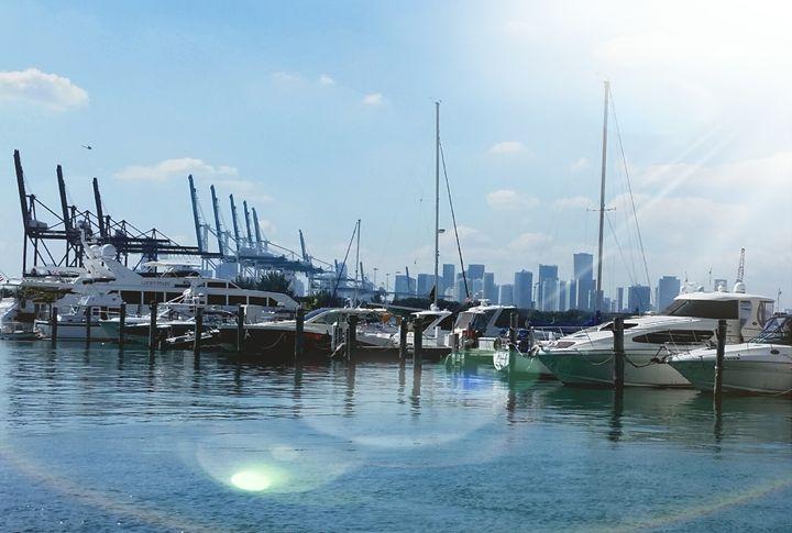 Sunlight on Miami Beach Marina - South Beach, Miami Art