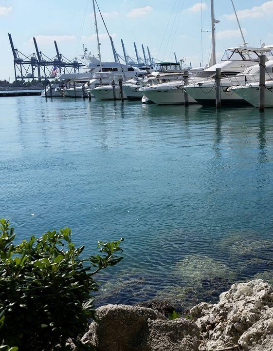 Miami Beach Marina boats docked - South Beach, Miami Art