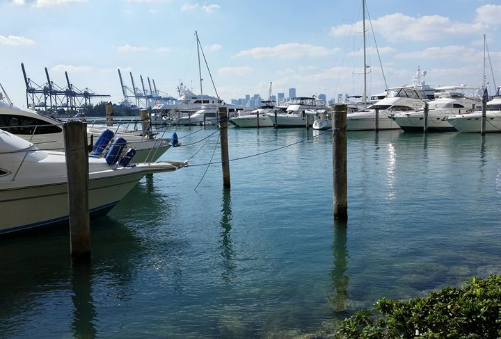 Miami Beach Marina (southeast) - South Beach, Miami Art
