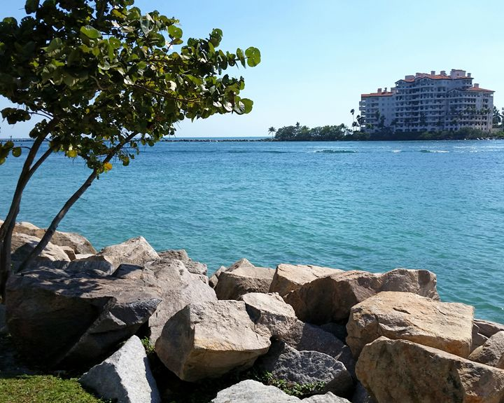 View Fisher Island from South Beach - South Beach, Miami Art