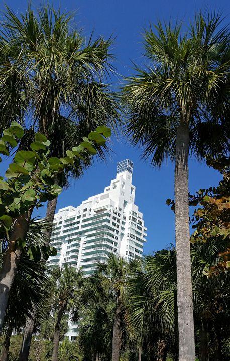 South Pointe Tower Miami Beach - South Beach, Miami Art
