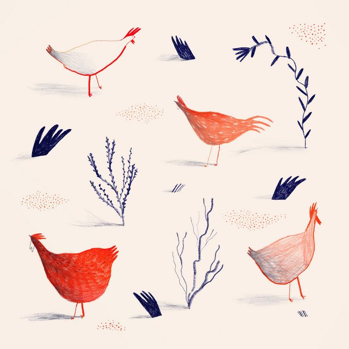 Hens and plants - Trudeiskrude