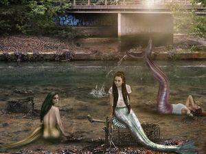 Urban Mermaid Colony