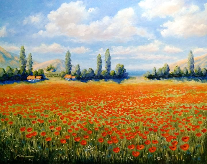 Poppy field - Oleh Rak