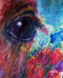 An Eye Foal