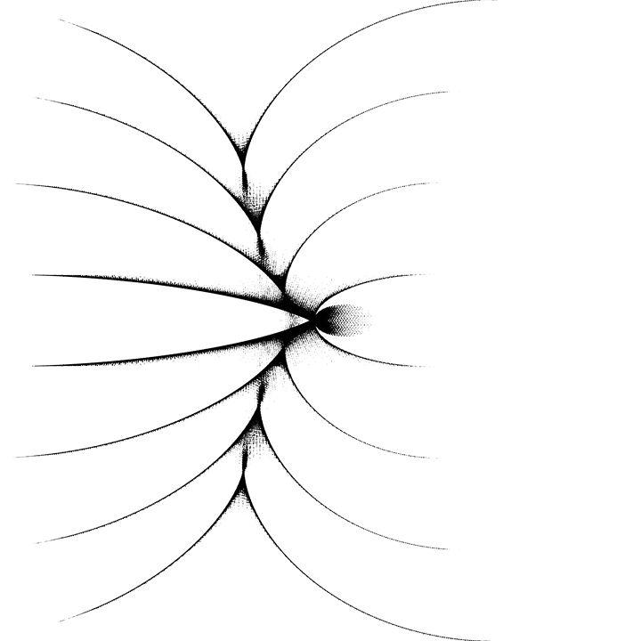 spider - Linnaeus Art