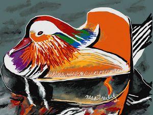 Mandarin Duck - Nesa's Art