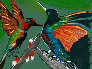 Humming Birds - Nesa's Art