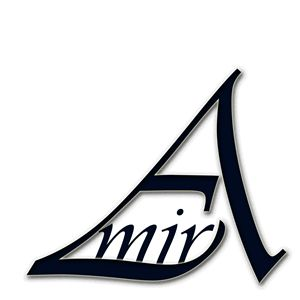 Amir Typography