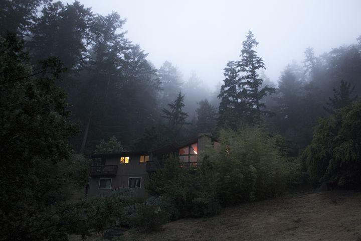 Mystical Fog - Empty Cup Gallery