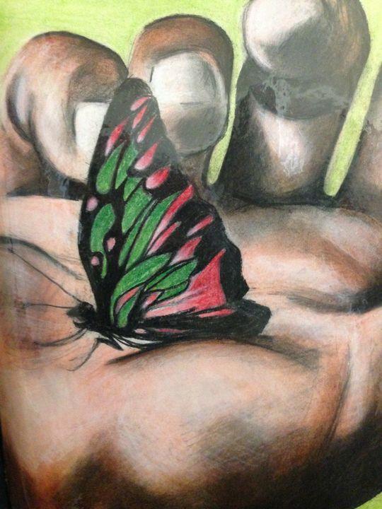 Black Butterfly - magic city art