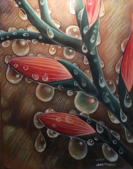 Raindrops on the flower buds - magic city art
