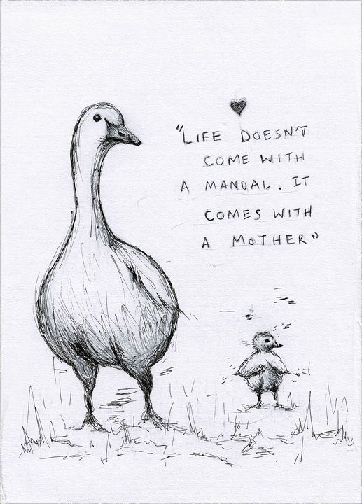 Life doesn't come with a manual - The Chick and the Duck