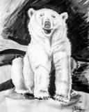 Drawing of a polar bear
