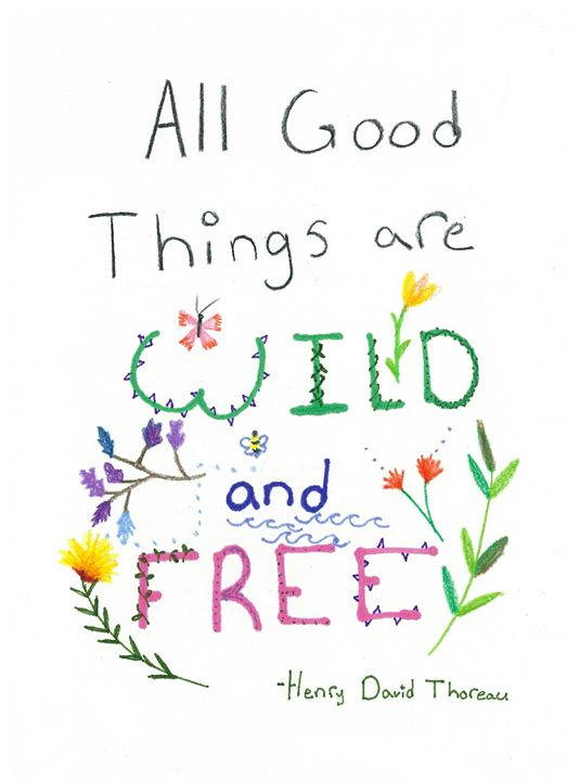 wild and free - Evelyn Flannery