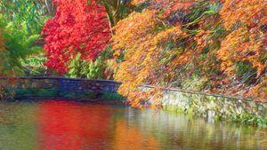Autumn Sublime