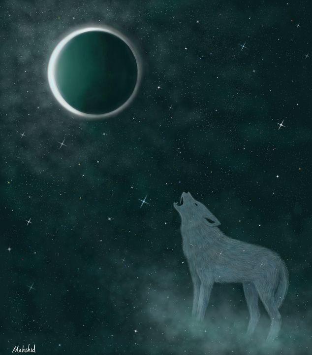 Lone wolf - Mahshid