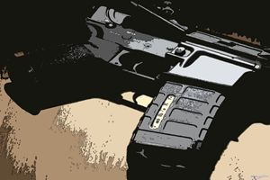 Handle of a Gun