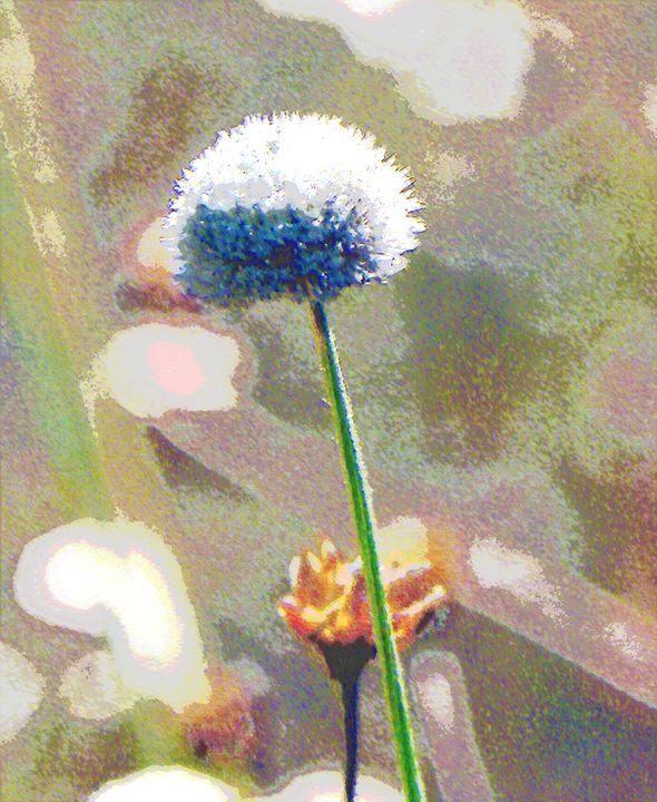 Spring Flower - Scoops
