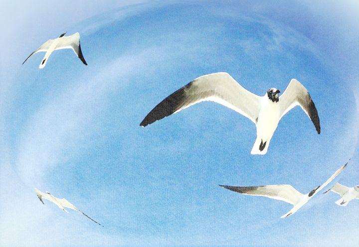 Gulls in a Globe - Scoops