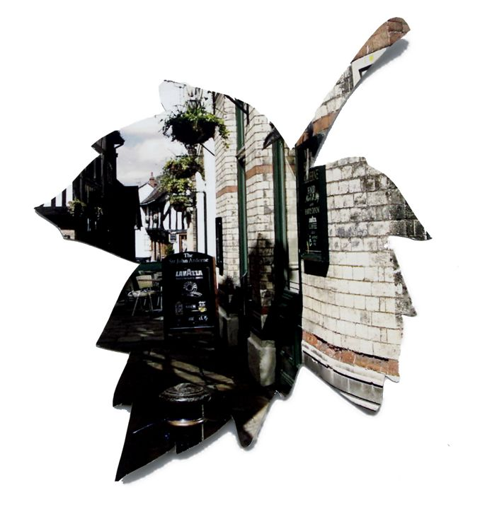 Street leaf - Beth Wilson
