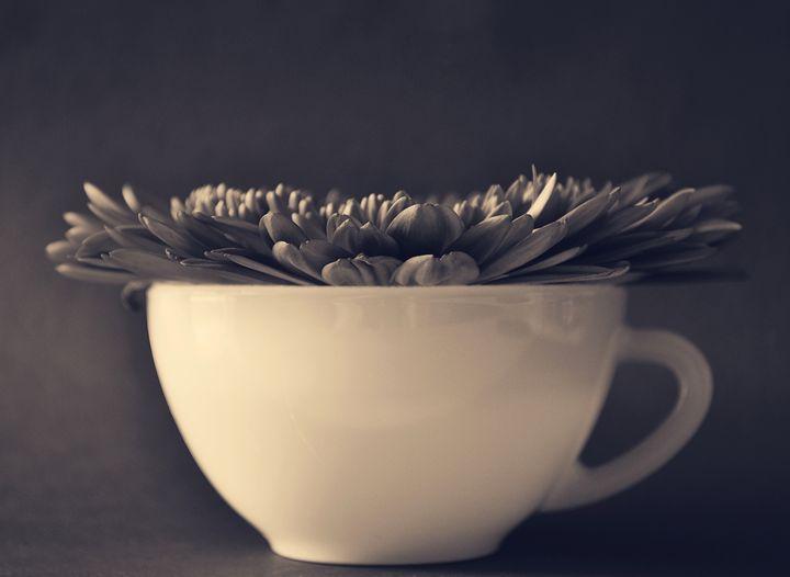 Flower in Cup - Reene Wessels Art