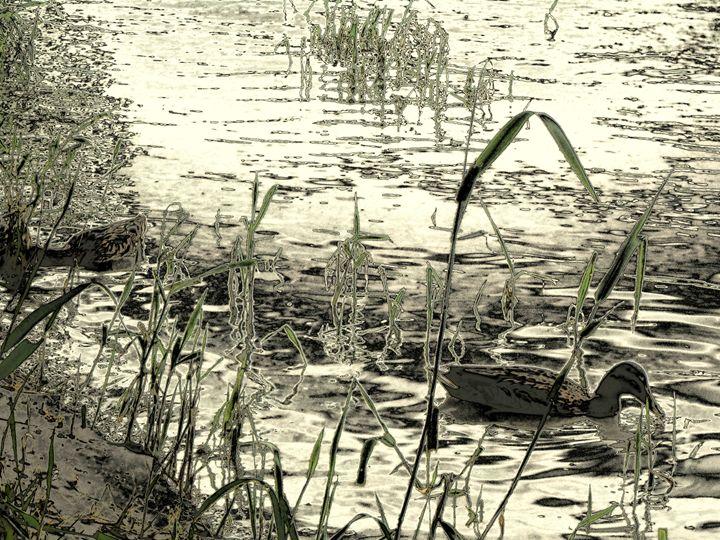La vita sul fiume Adige - Gianantonio Marino Zago