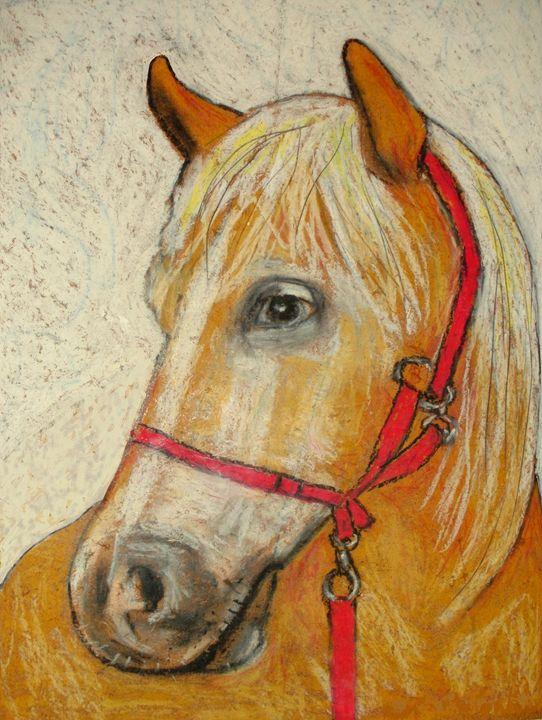 Baltieri's horse. - Gianantonio Marino Zago