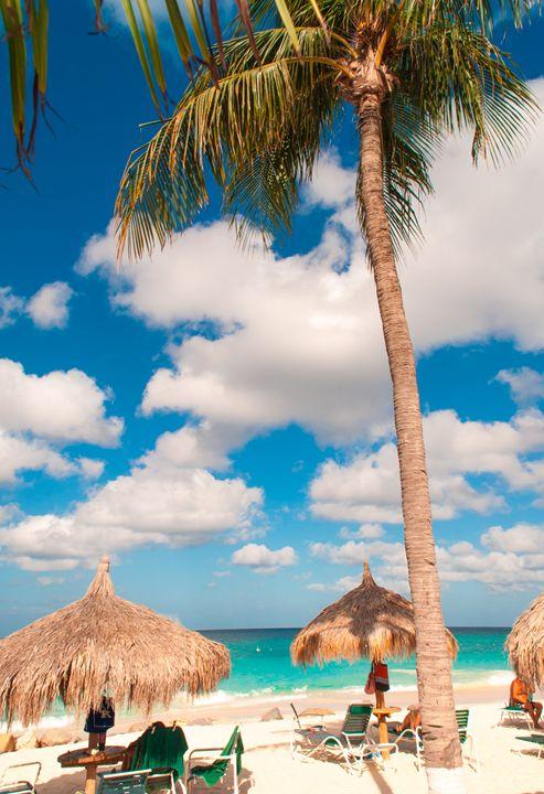Tropical Island Feel - Aruba Scenes