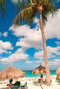 Tropical Island Feel