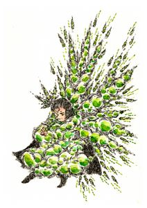 Edamame (Green beans)