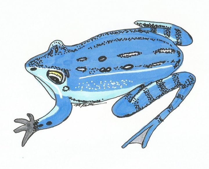 Blue Frog - MK Nature Design