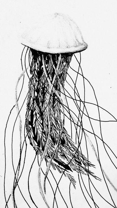 Greyscale Jellyfish - Rin's Gallery
