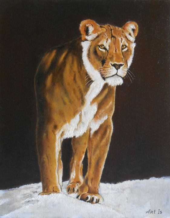 """Lioness on the snow"" - arthuris"