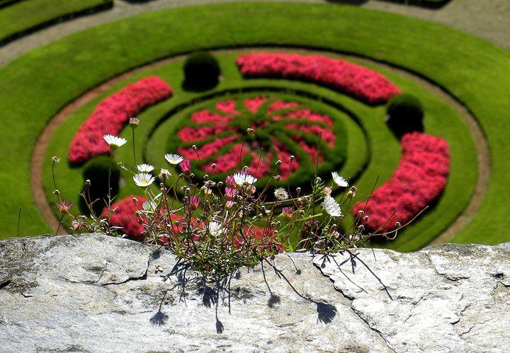 Angers - Crimson Inspirations by Sue E.