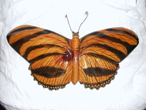"Wooden "" Dryadula"" Butterfly - DryRiver Carvings and Art"
