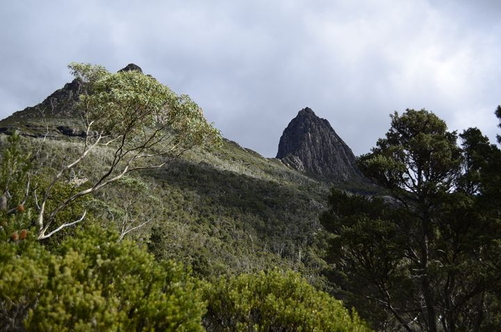 Cradle Mountain - kotrynajuskaite