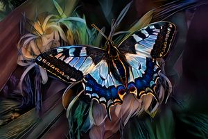 Alighted Swallowtail Butterfly