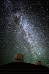Stardust Inspection -Portrait-