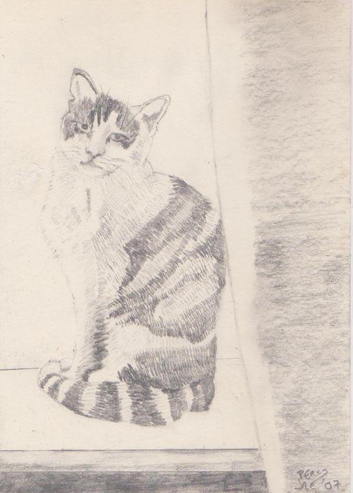 Percy in Window 2 - Ivyemaye