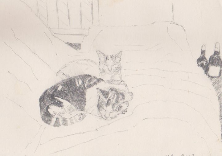 Percy and Amie on the bed - Ivyemaye