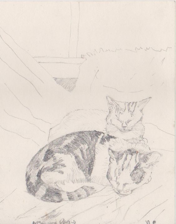 Percy and Amie as Kittens - Ivyemaye