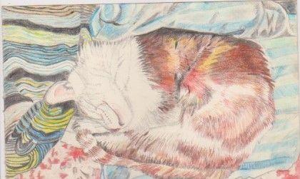 Percy Asleep - Ivyemaye