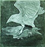 Il corvo - 3