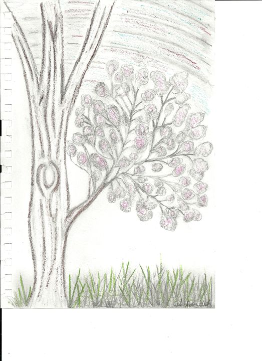 A good ol tree - Anne's drawings