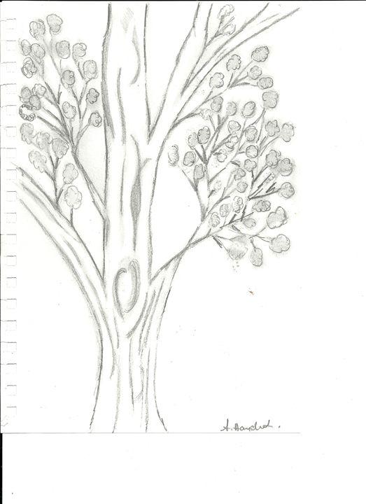 A tree - Anne's drawings