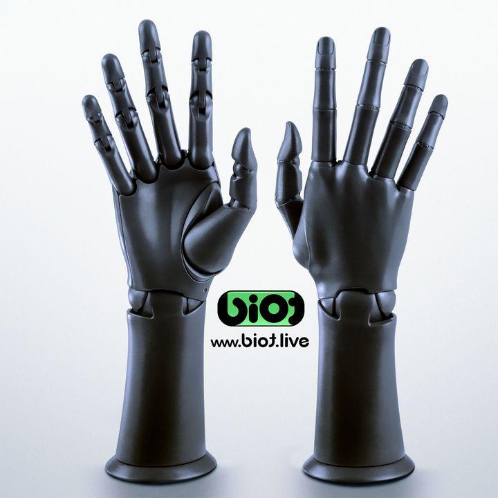 Articulate Hand model BIOT - BIOT