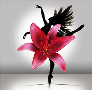 Dancer In Petals