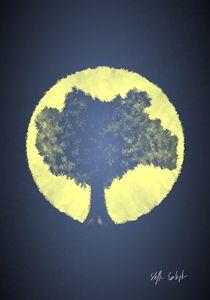 Tree - Sun