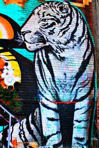 Momma Tiger